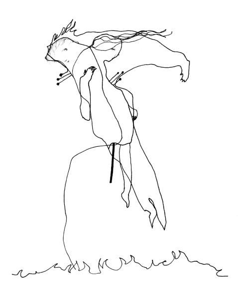 Pluck.2015.300dpi.drawing.ccoe